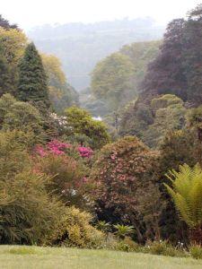 Trebah Garden Photo Credit: Eva Kröcher