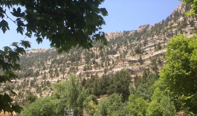 Lebanon Hillside, photo credit: Sandybellee