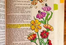 Cone Flower Bible Page