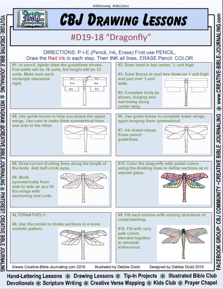 D19-18-Dragonfly-PageView