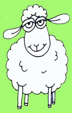 DR Sheep ONE
