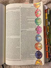 Elm Kings Beads Colored