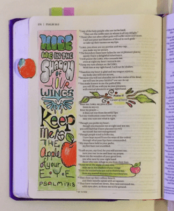 Psalms-17-8-Margin-art-Pink-Bible (1)