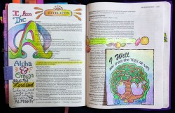 Rev Example Alpha Omega colored bible