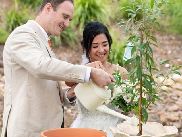 Married couple performing tree planting ritual as a part of their Brisbane outdoor wedding