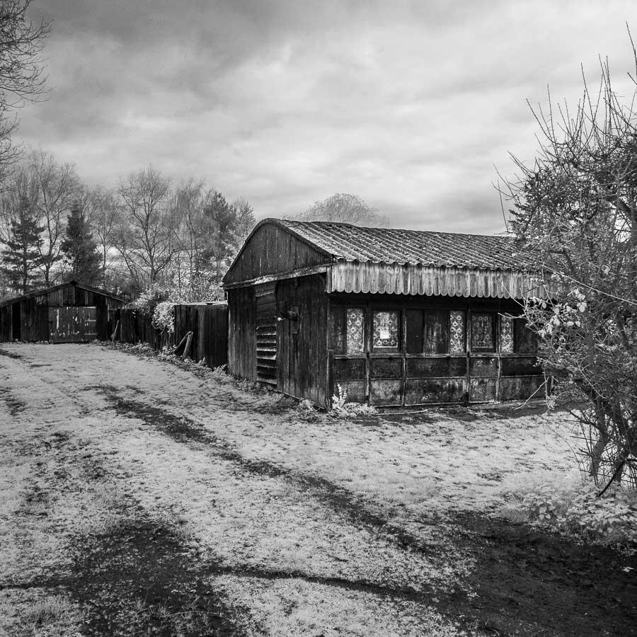 Black & white infrared landscape photo taken in Norfolk, England