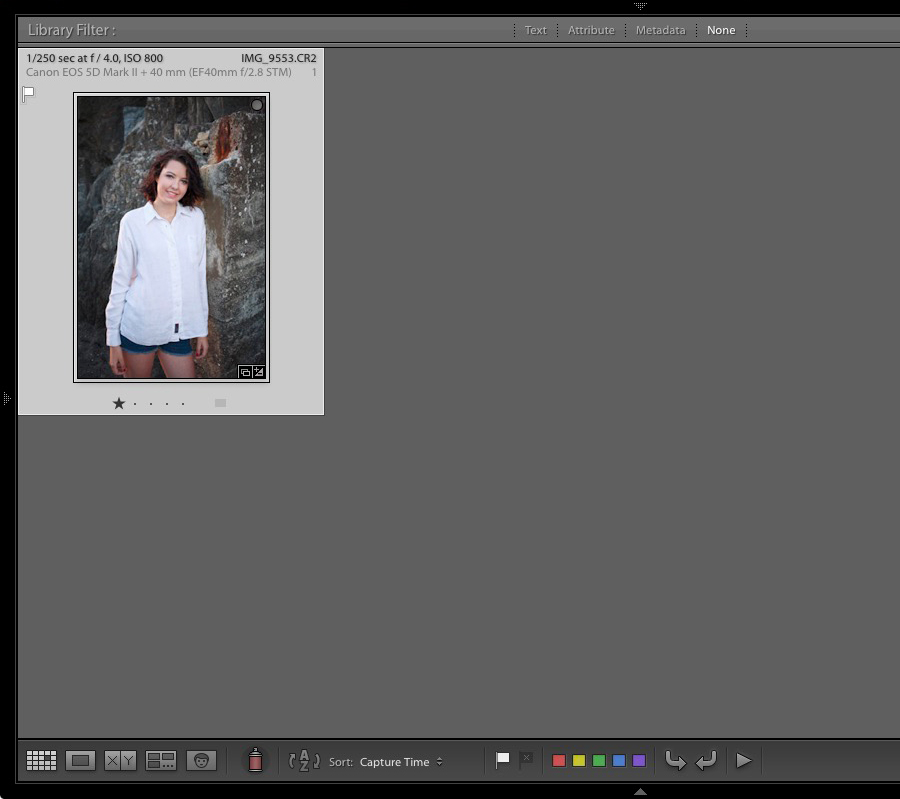Lightroom Grid View showing a Collection