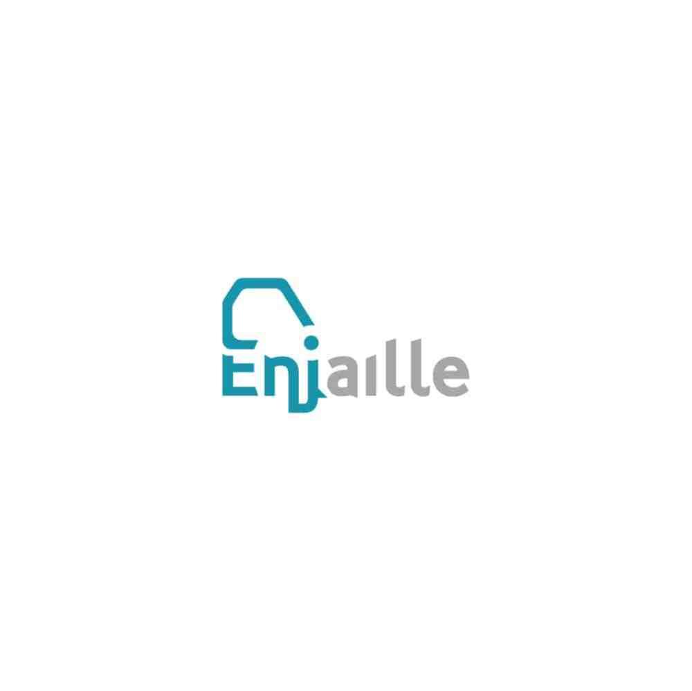 74-Logo-pas-cher-enjaille-minimaliste-moderne-graphiste-annemasse-genève-communication-creation-conception-creative-raccoon-site-web-internet-conception-entreprise