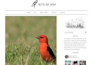 Bits of Ash Web Design