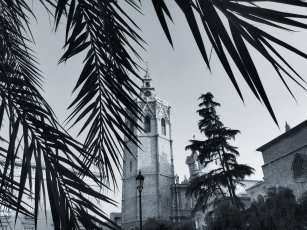Catedral Tower | Plaza de la Reina