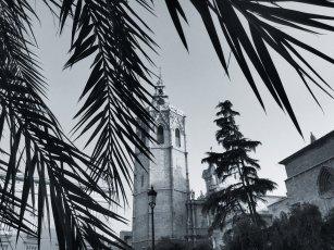 Catedral Tower | Plaza de la Reina