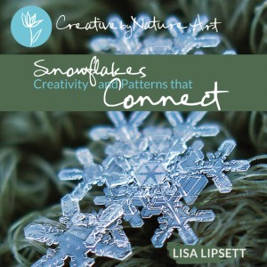 Snowflakes, Creativity and Patterns that Connect