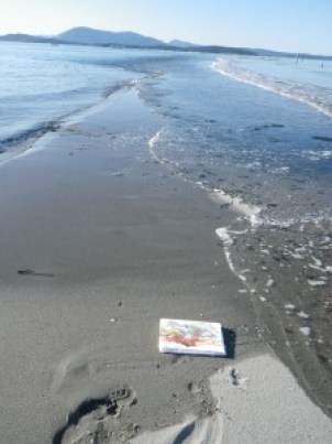 Painting with waves on Sidney Spit.