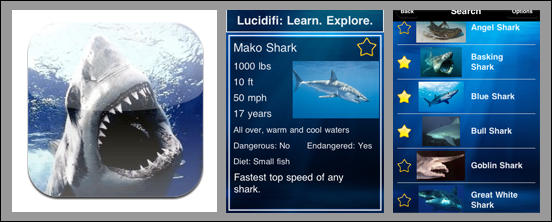 Learn Sharks