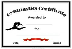 gymnastics award certificate with a picture of a gymnast in the air