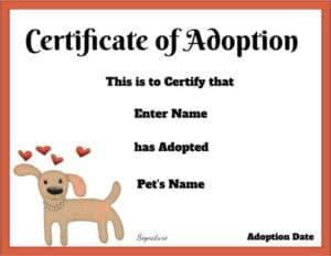 Stuffed animal adoption certificate