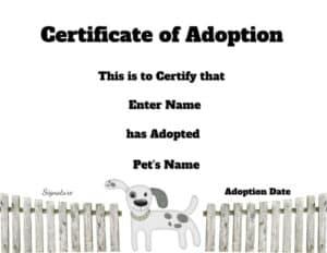 Certificate of adoption
