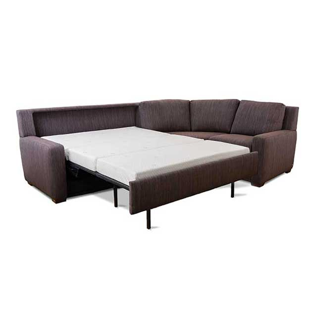 Sectional Couch Sleeper Sofa