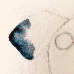 du siehst das Ohr des blauen Karfunkelhund. Gemalt mit Indigoblau