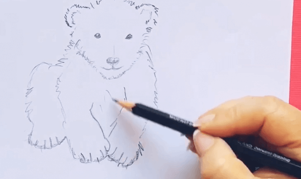 Man sieht eine Bleistift Skizze zum Thema Eisbär