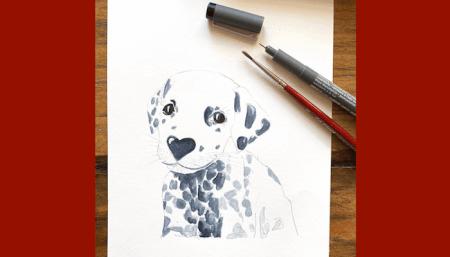 Man sieht das Bild eines Dalmatiners in Aquarell-Technik. Gemalt wurde es von der Künstlerin Dodo Kresse für Creative Club.