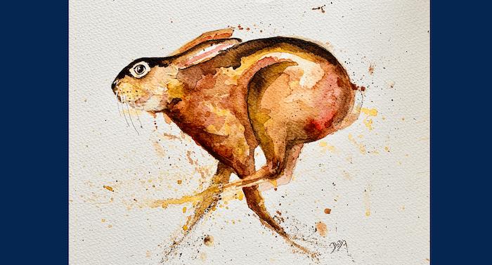 Man sieht ein Aquarellbild von einem laufenden Hase von Dodo Kresse für Creative Club