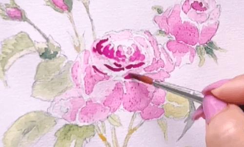 du siehst wie dodo das zentrum der rose malt