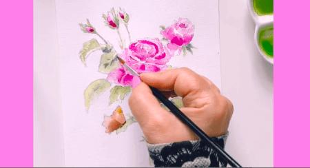 Die Abbildung zeigt ein Aquarell einer Rose, gemalt von Dodo Kresse.