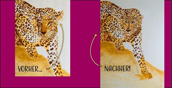 du siehst die vorher und nachher-version des leoparden in acrylfarben