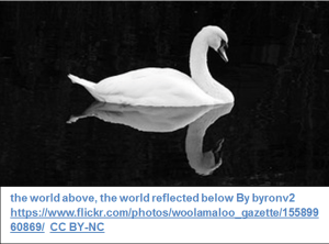 the world above, the world reflected below By byronv2 https://www.flickr.com/photos/woolamaloo_gazette/15589960869/  CC BY-NC
