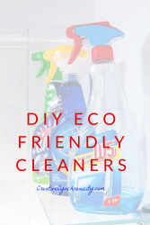 In the Home with Cyn: DIY Eco Friendly Cleaning
