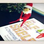 Elf on a Shelf Roundup