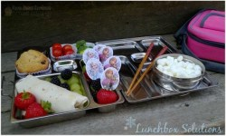 Fun and Educational Lunchbox Challenge {#12DaysOf School Lunches}
