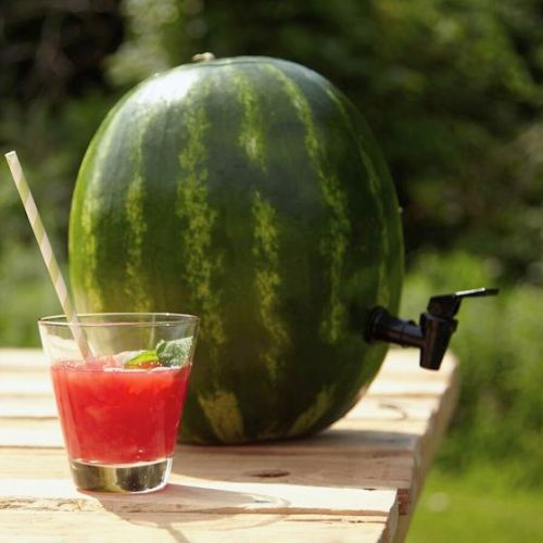Perfect for summer! Turn a watermelon into a keg!