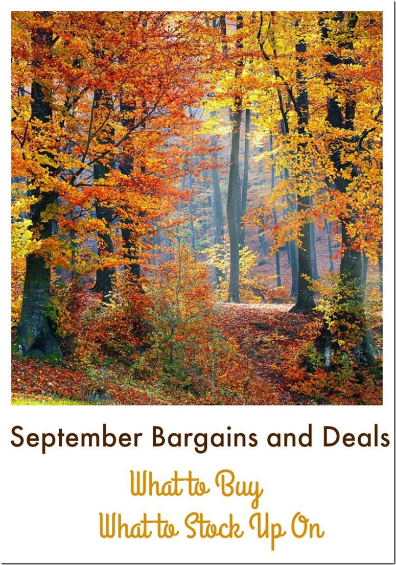 September Bargains and Deals
