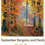 Great Bargains: Things to Stock Up on in September