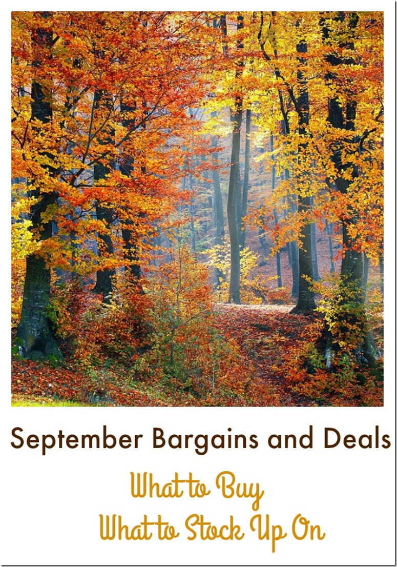 September Bargains and Deals