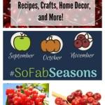 Cranberry Recipes, Home Decor, Crafts, and More!