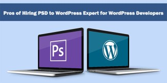 Pros of Hiring PSD to WordPress Expert for WordPress Developers