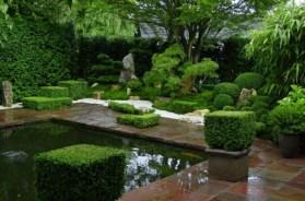 zen-garden-create-japanese-evergreen-plants-pond