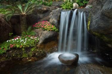 Zen-Gardens-3