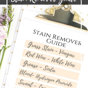 Instant download for this free printable. Stain remover guide laundry care hack
