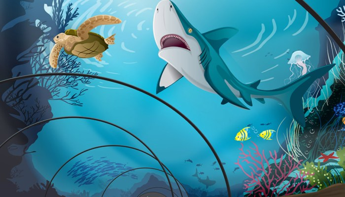 Diergaarde Blijdorp merchandise ingekleurde tekening haai