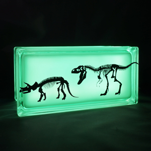 Glass block nightlight with dinosaurs