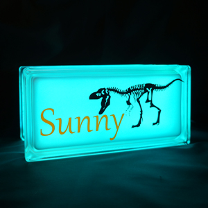 Glass block nightlight with t-rex decal
