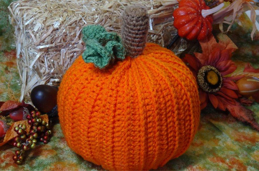 # 615 Pumpkin Toiulet Paper Cover Photo