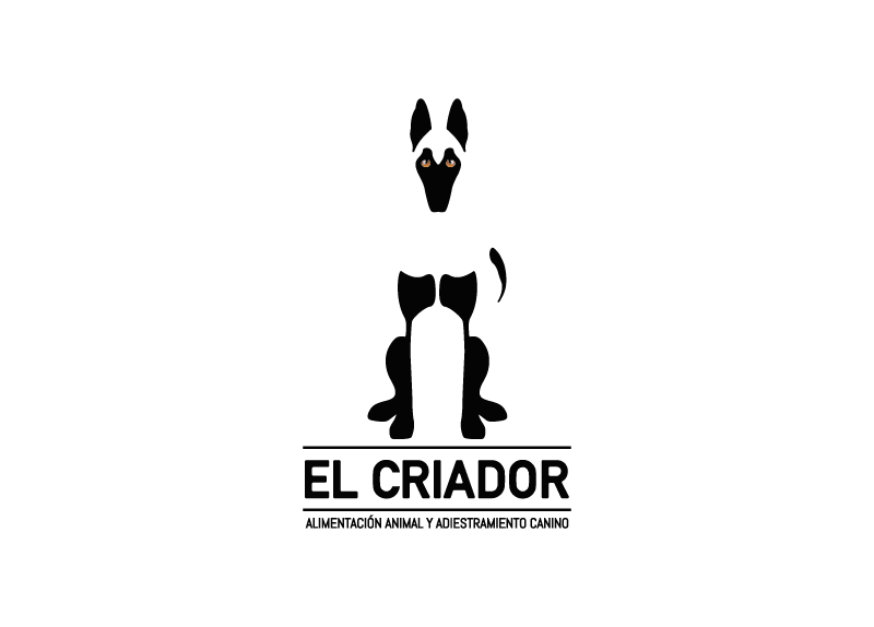Creación de logotipo