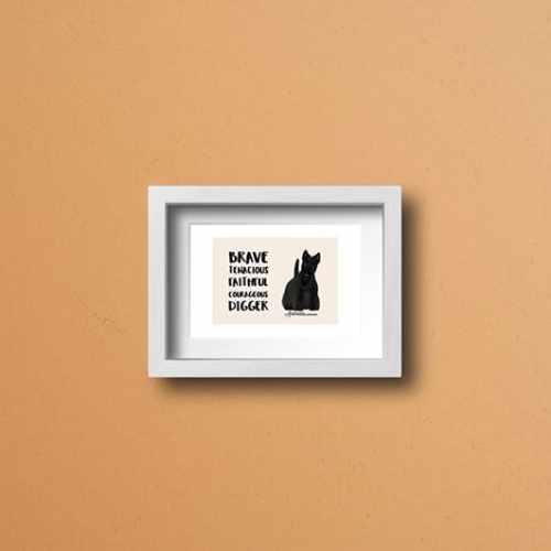 Láminas Scottish Terrier