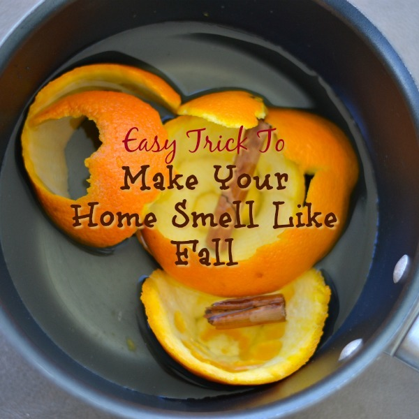 Easy diy trick to make your home smell like fall How to make the house smell like cinnamon