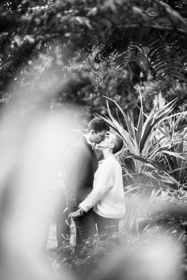 black and white image shot looking through a plant to a couple kissing